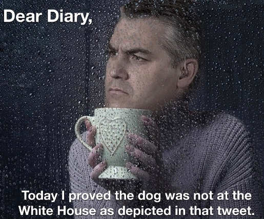 jim-acosta-today-proved-dog-depicted-in-
