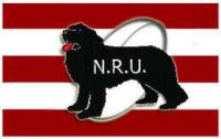 NL Rugby Union Emblem