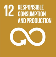 SDG, sustainable, development, goals
