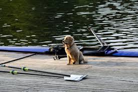 Do You Wanna Build a Boathouse??????