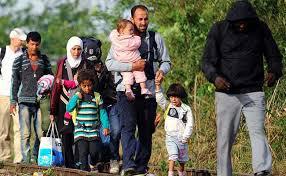 more asylum applications than births