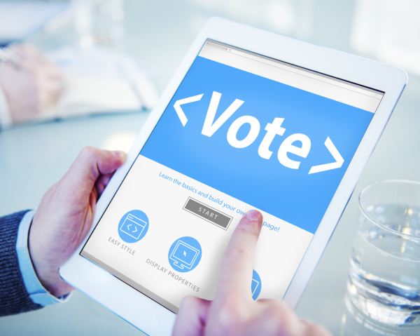 local election revote
