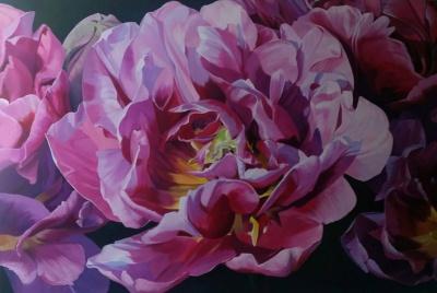 Margaurite Tulip