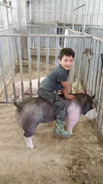 Sam on Piggles