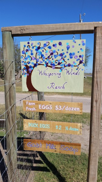 Hand-painted sign for our farm