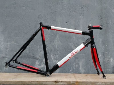 Galibier Winter Bike Custom Paint