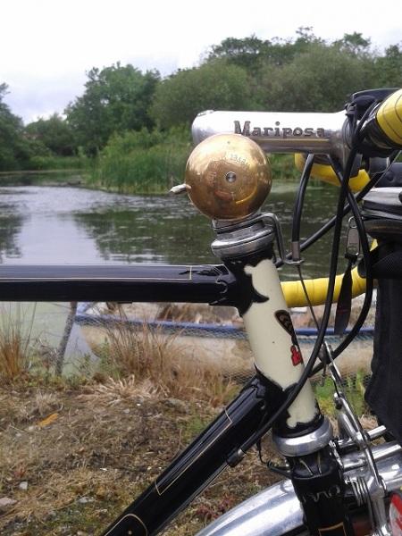 Custom Bike