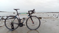 Custom Reynolds steel road bike