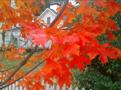 Fall......Our favorite time to travel