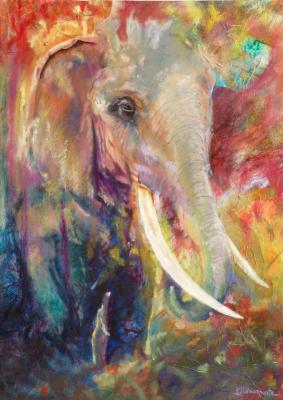 Elephant Spring