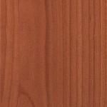Atlantic Cedar