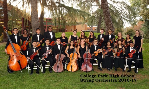 STRING ORCHESTRA