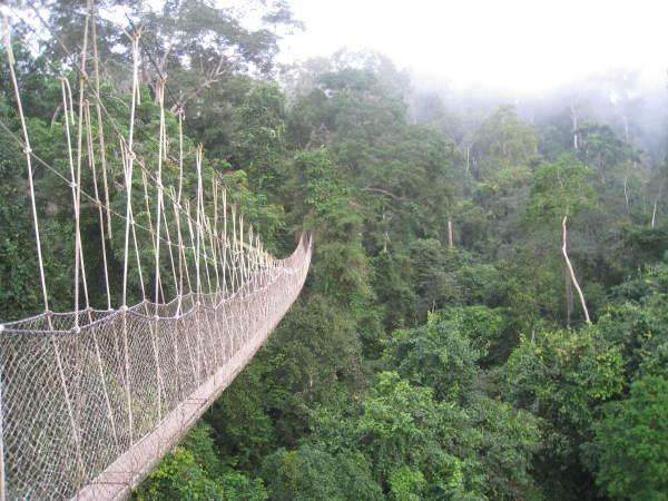 Kakum National Forest