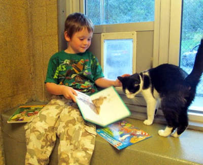 Helping your child become a successful reader at home.