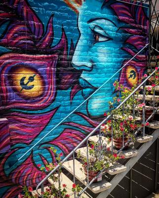 Wall mural by Beth Emmerich