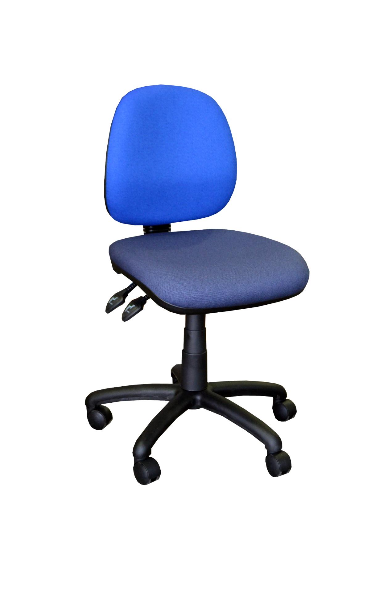 Direct Ergonomics | Sydney Office Furniture | Ergonomic Furniture | Ergonomic Seating | Executive and Task Seating | Executive Chair | Genex 600