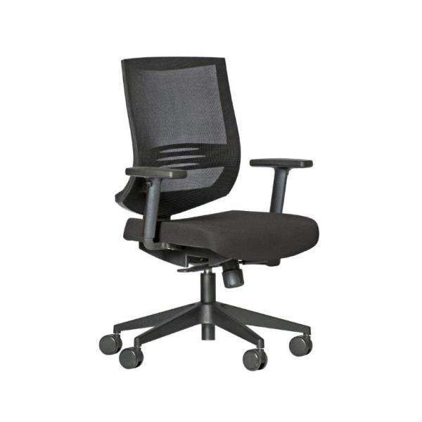 Direct Ergonomics | Sydney Office Furniture | Ergonomic Furniture | Ergonomic Seating | Executive and Task Seating | Office Chair |Breeze 200