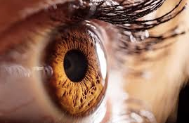 Unproven Stem Cell Treatments: An Eye on a Systemic Problem