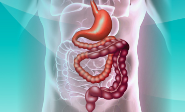 The Elegant Solution to Short Bowel: Grow More and Attach