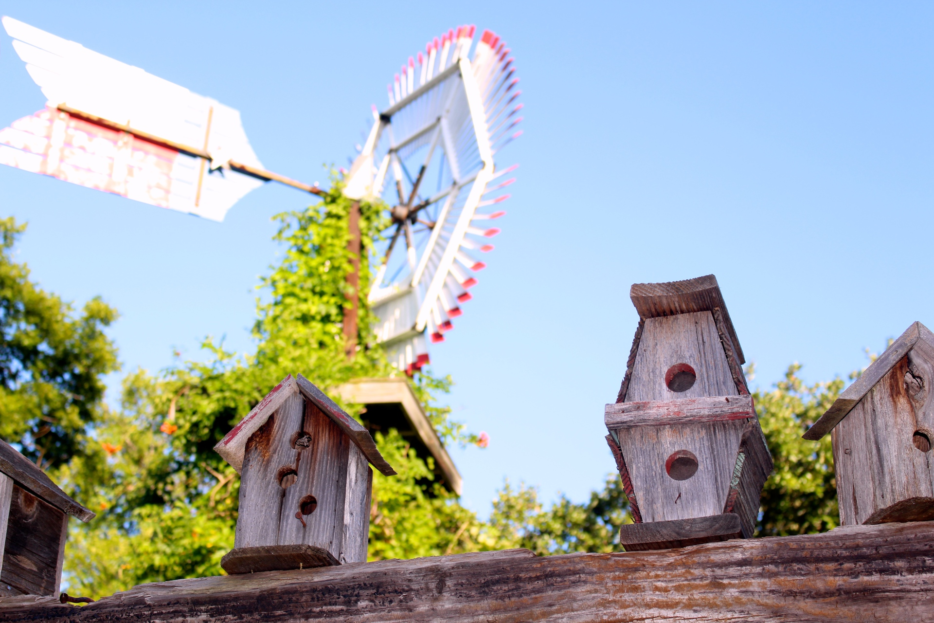 bird house, country, farm, windmill