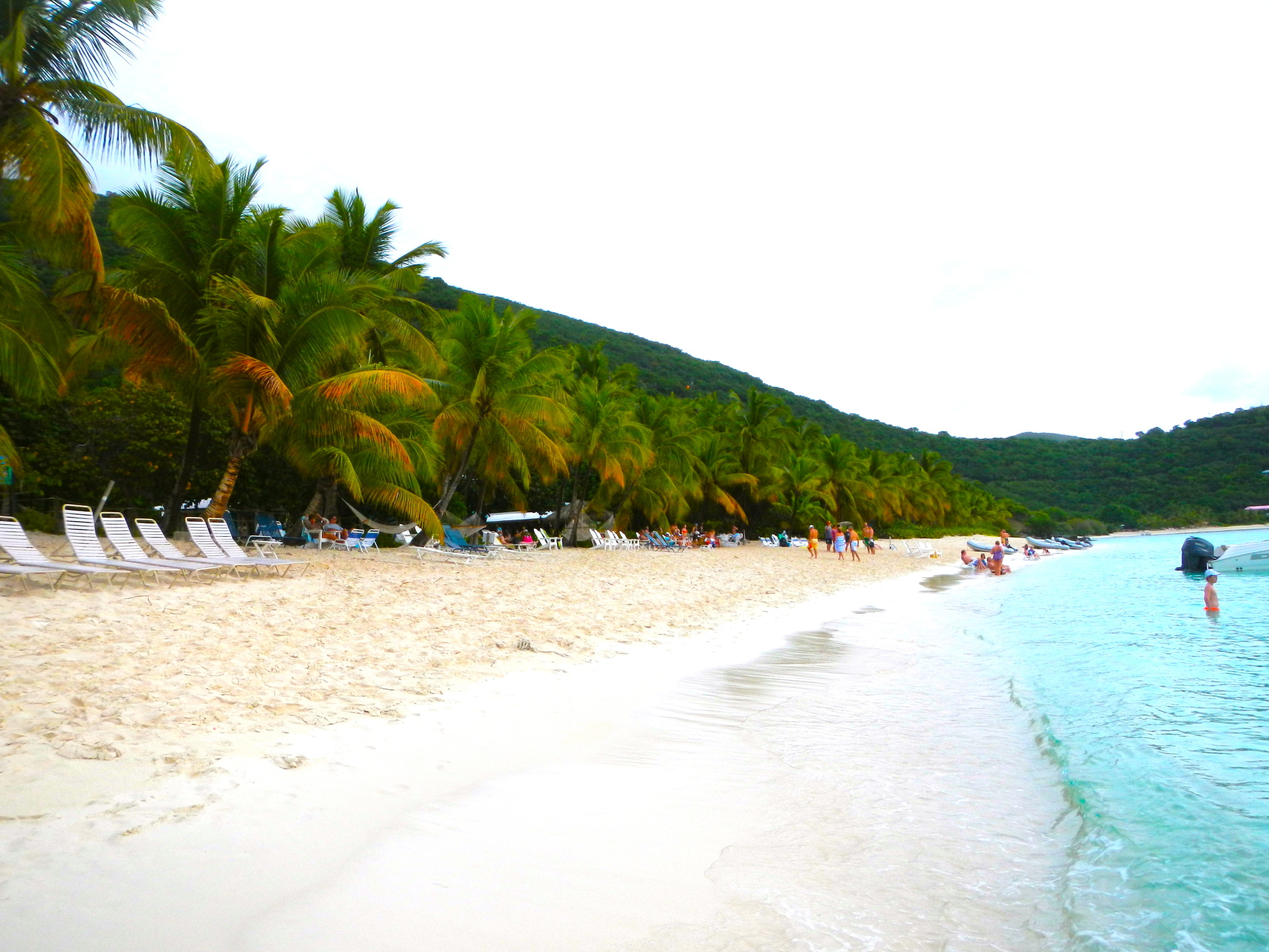 island, gertrude's, trees, beach