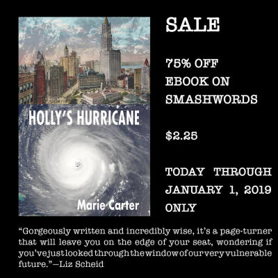 HOLLY'S HURRICANE on sale between December 25 and January 1