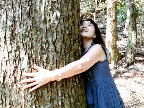 木からもらうエネルギー