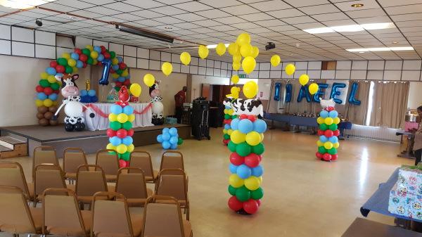 Farm balloon canopy!!