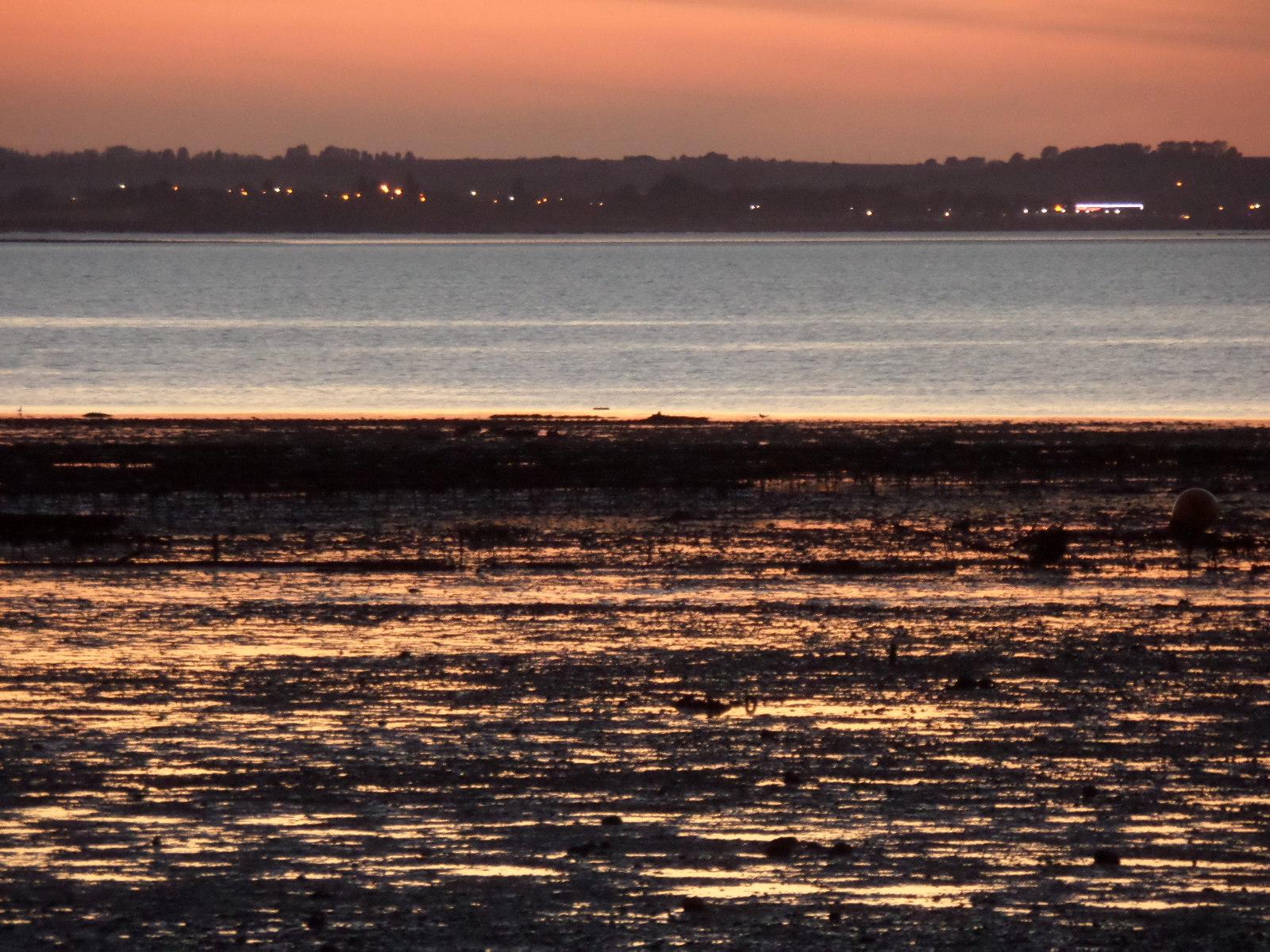 Sunset over sheppy
