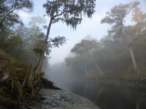 Suwannee, October