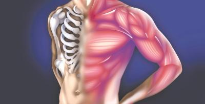 Inflammation/ Arthritis/Fibromyalgia