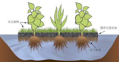 PhytoLink   处理型人造漂浮湿地