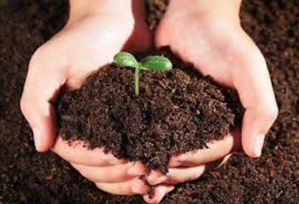 2018 Soil Remediation Workshop (China)