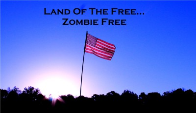 Our Flag was still there - Zombie Free