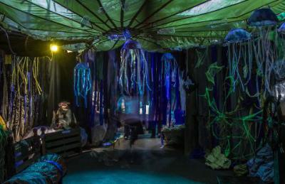 Ascarium - NY Aquarium