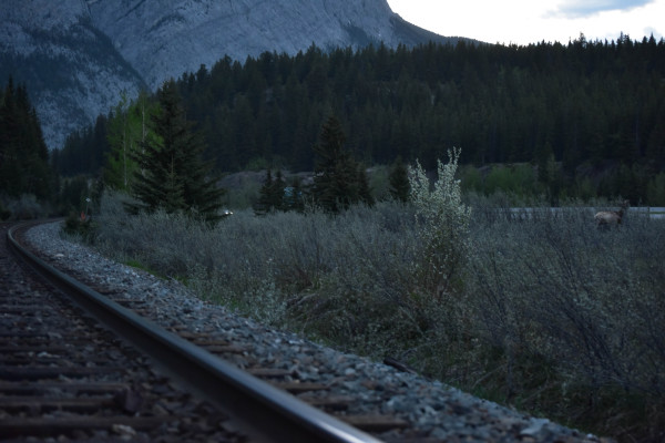 CPR Main Line