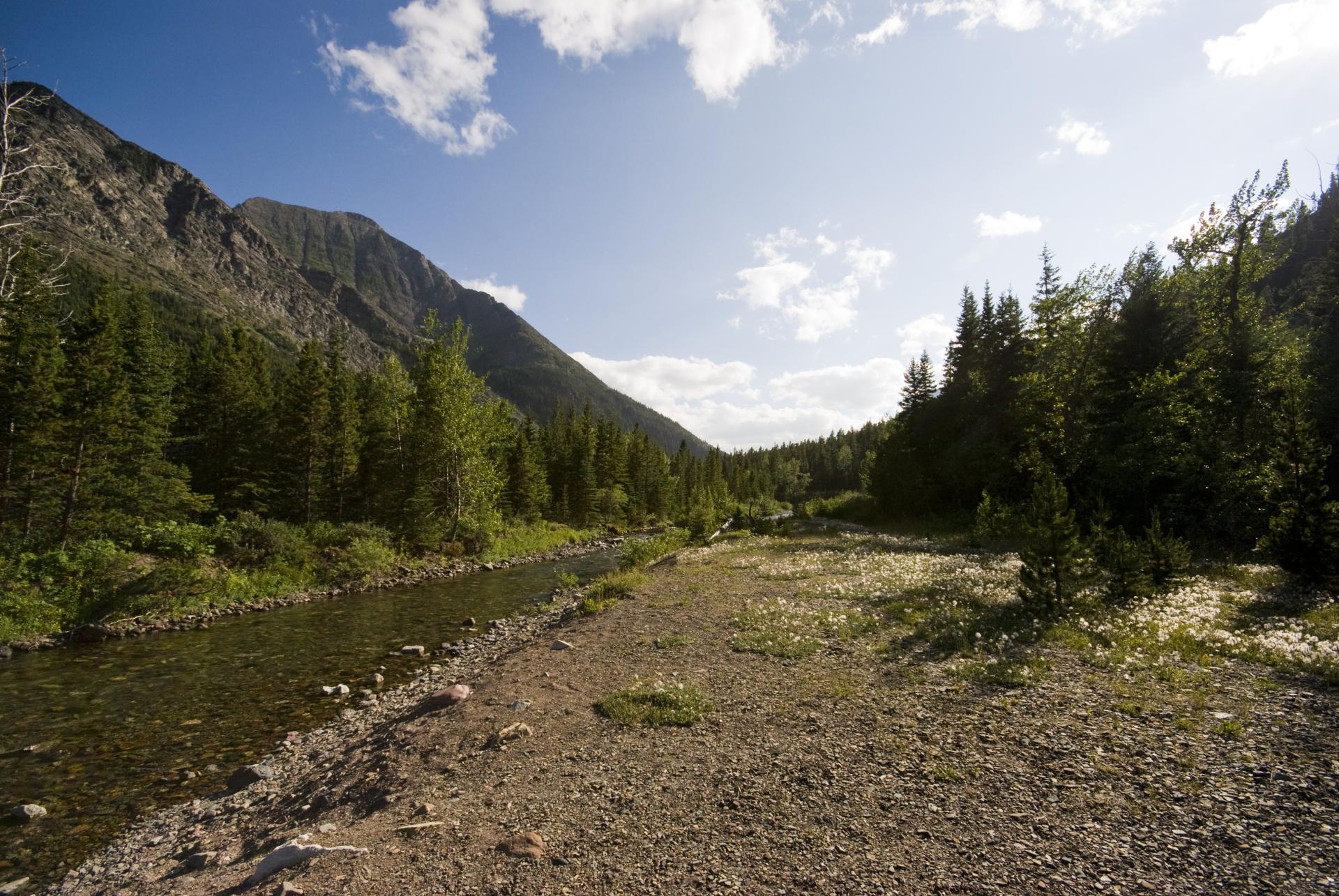 Cameron Creek (Oil Creek)