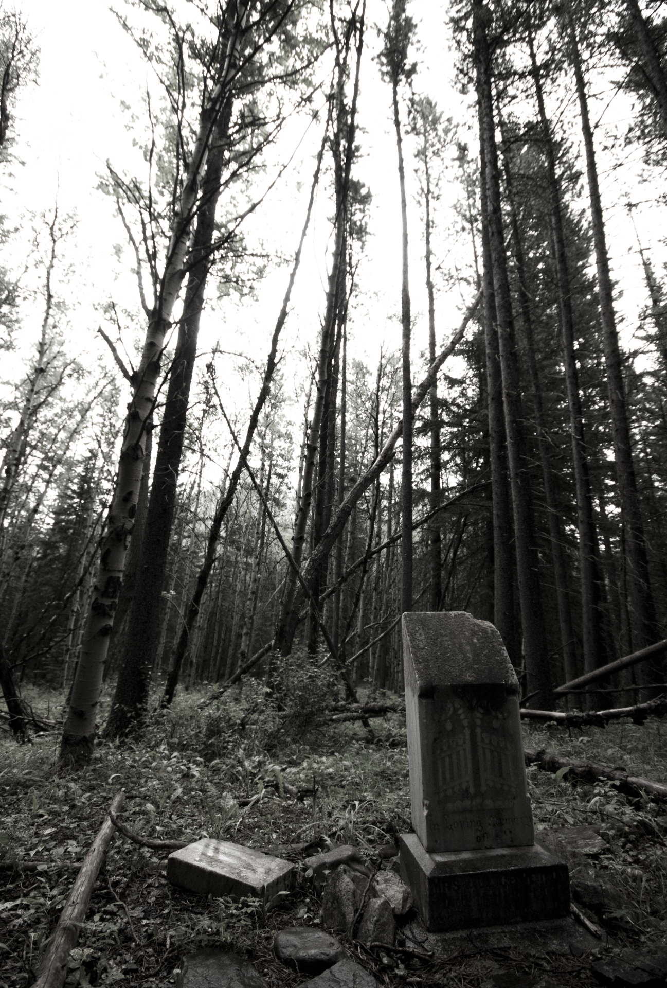 Lille Graveyard