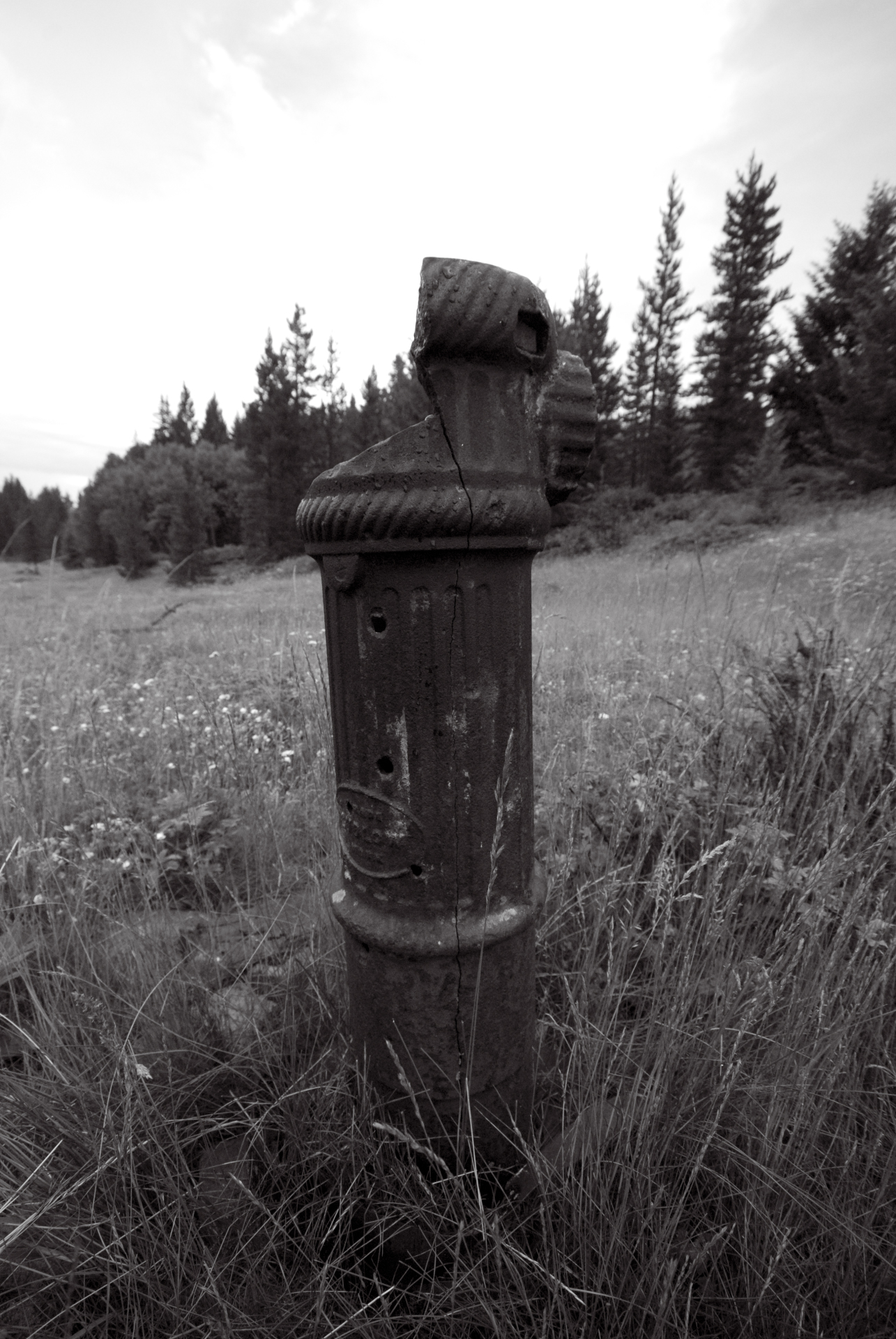 Fire Hydrant Marking the Wealthy Residential Area