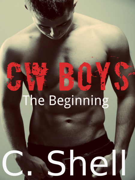 bad boy, alpha male, romance book, new adult book, ebook, kindle read,