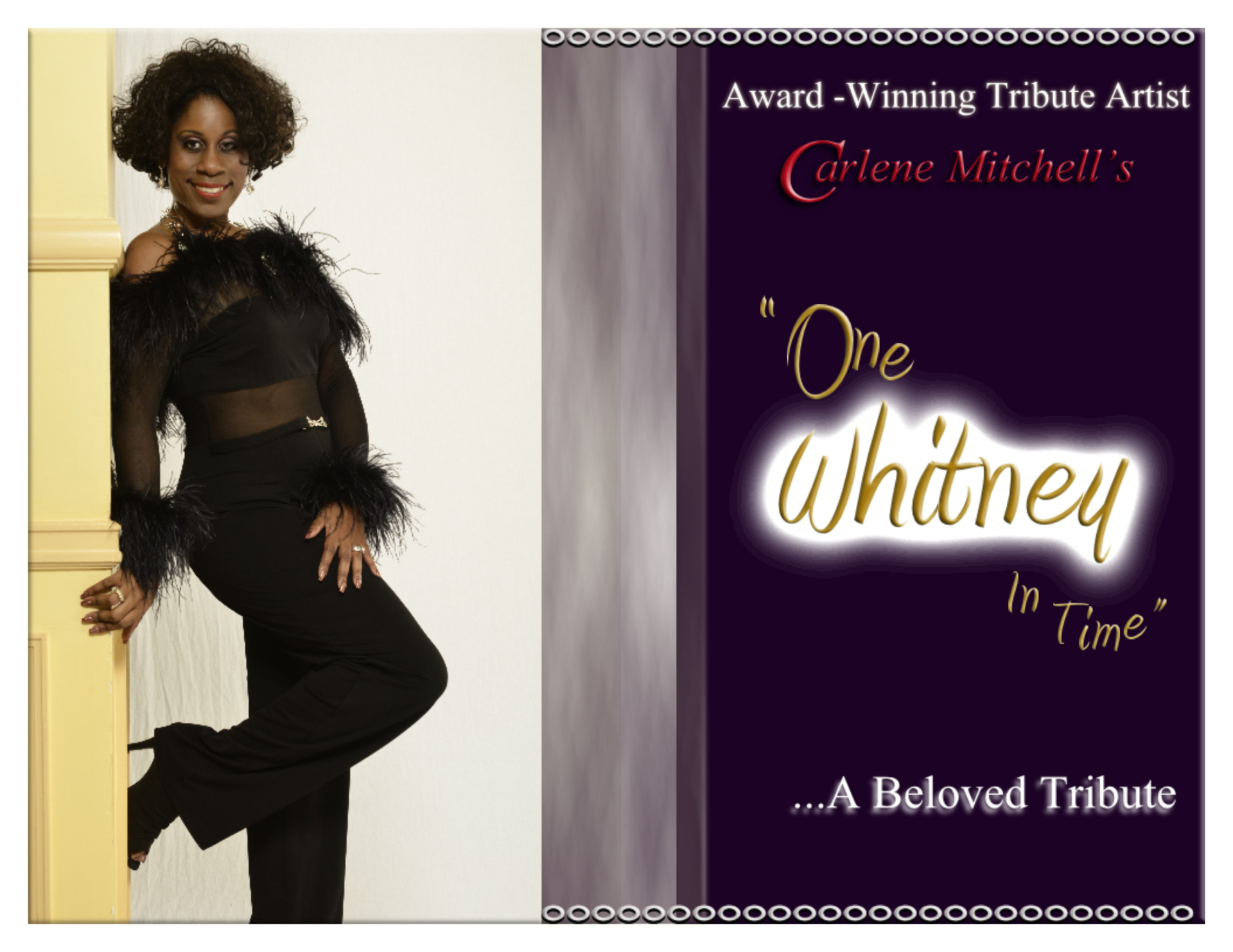 """One Whitney In Time"" …A Beloved Tribute"