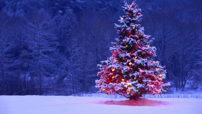 Side Story: The Holiday Season
