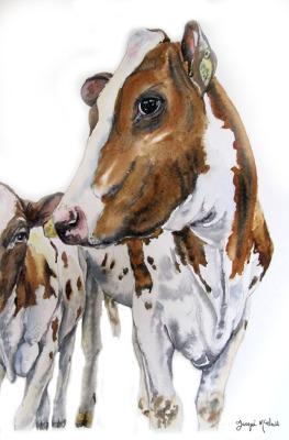 An Eye on her Calf