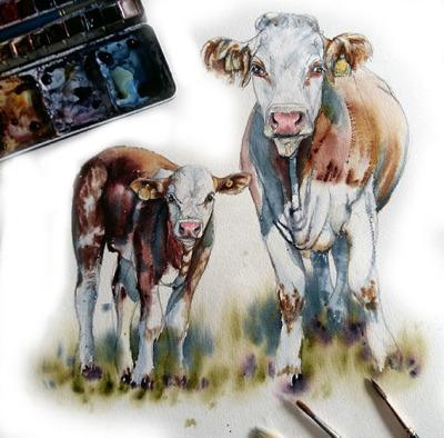 My calf