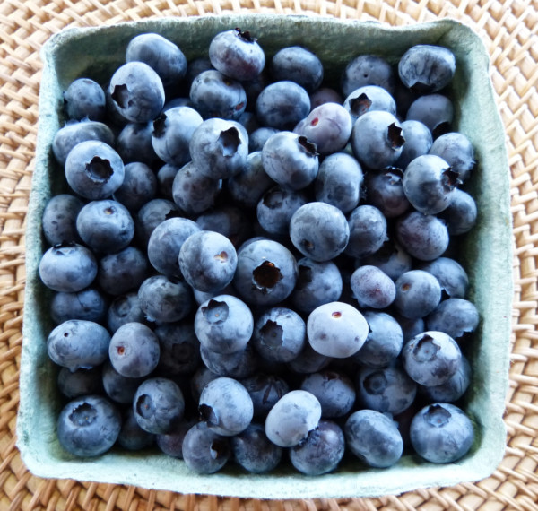 blueberries-victoria-bc-fresh