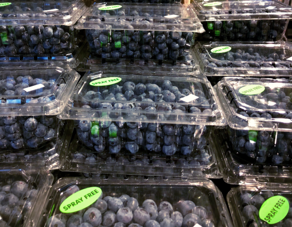 Now Selling Fresh Spray-Free Blueberries at The Root Cellar!