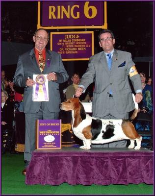 WKC 2010 Best of Breed Winner