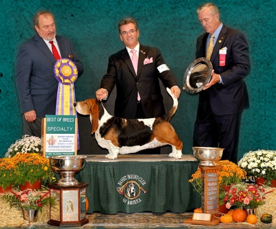 Best of Breed National Specialty Winner