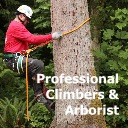 Professional climbers and arborist