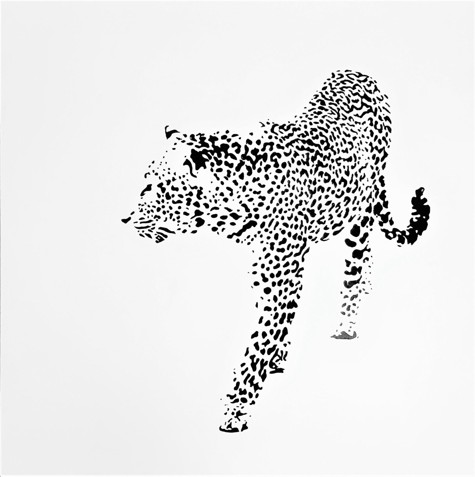 Leopard Searching